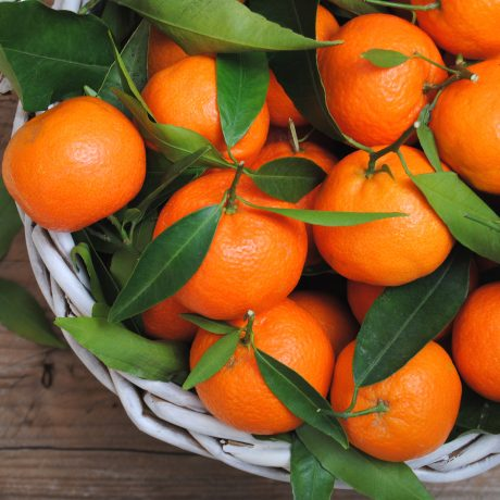 Mandarins with leaves just from the tree